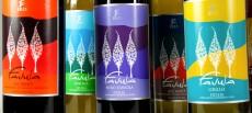 Bottiglie vino Favula